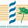 logo Centre Hospitalier Arles - Joseph Imbert, Bouches-du-Rhône, Provence-Alpes-Côte d'Azur.
