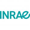 logo INRAE - institut national de recherche pour l'agriculture, l'alimentation et l'environnement