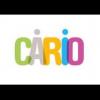 logo CENTRE ARMORICAIN DE RADIOTHÉRAPIE, D'IMAGERIE MÉDICALE, D'IMAGERIE MÉDICALE ET D'ONCOLOGIE  (CARIO).