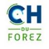 logo CH du Forez à Montbrison et Feurs dans le département de La Loire en région Rhône Alpes